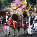 澤崎さんの飾り馬