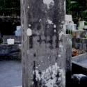 秋岡冬日墓背面